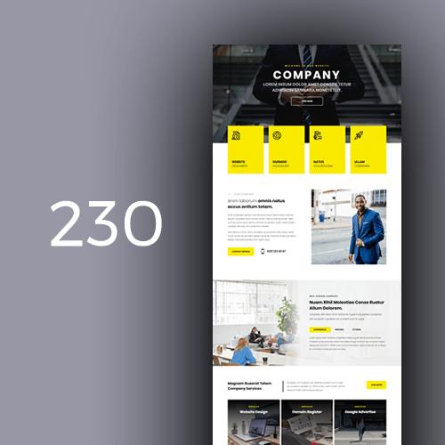 company 31